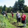 Learning Disabled Farm Workers